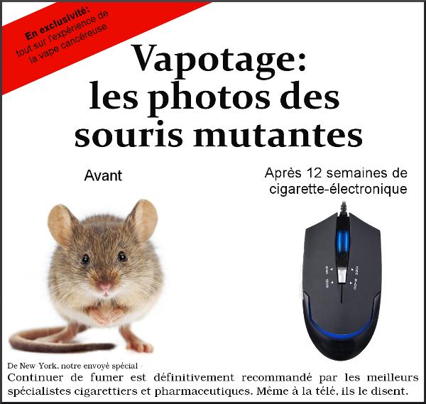 On a retrouvé la photo d'une souris vapoteuse mutante Souris10