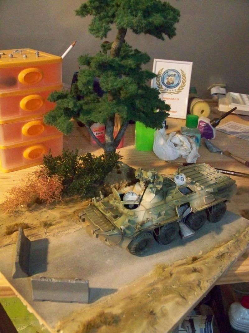 BTR80A APC Russe a la frontière Ukrainniene  100_3886