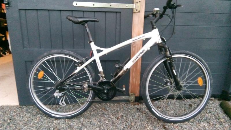 Présentation de mes bikes Img_2011