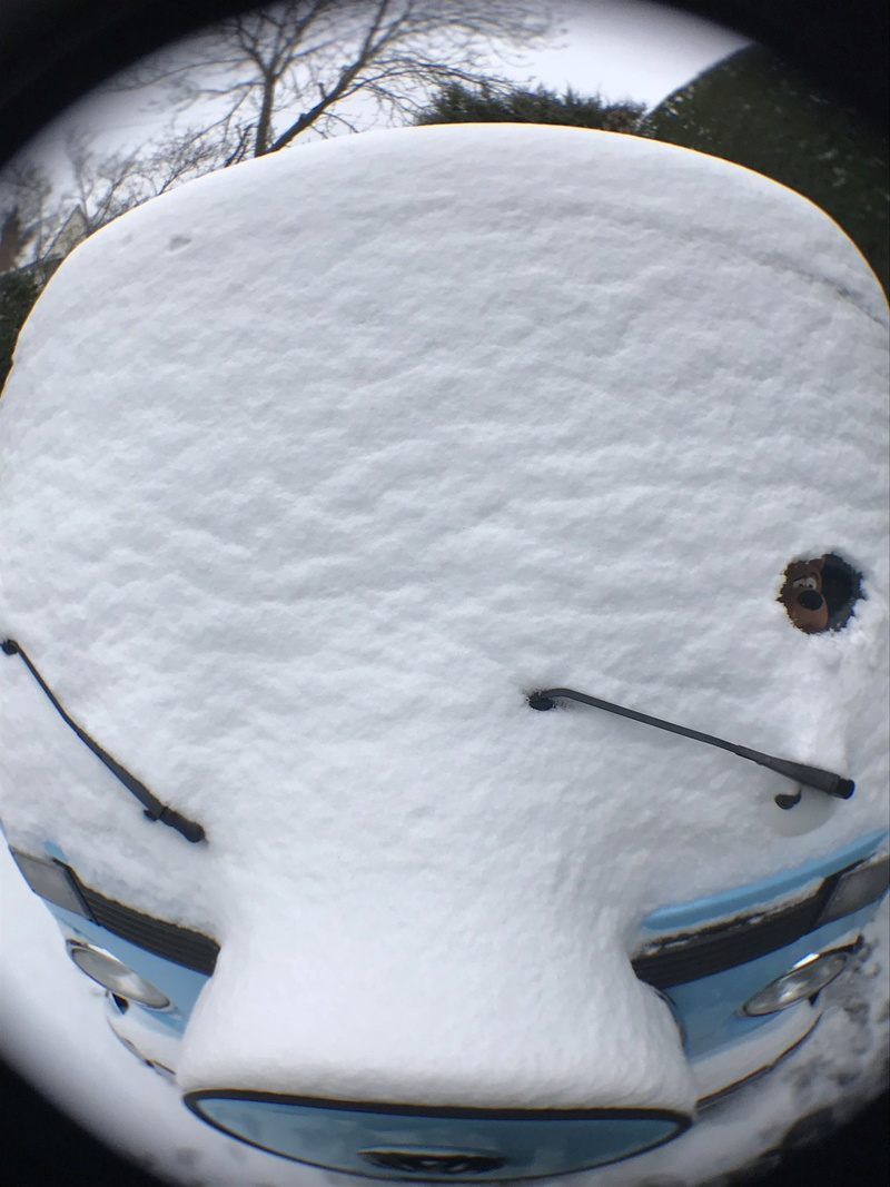 Snow Pics Img_0816