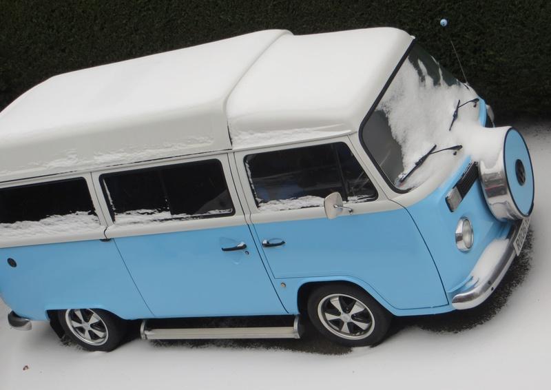 Snow Pics Scooby19