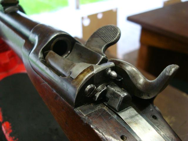 Essais, tirs, et comparatif de fusils réglementaires à cartouche poudre noire Dsc01713