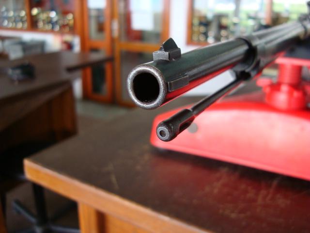 Essais, tirs, et comparatif de fusils réglementaires à cartouche poudre noire - Page 5 Dsc01734