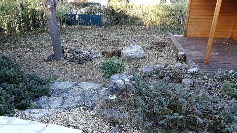 Maison et jardin, changement et évolution Img_2034