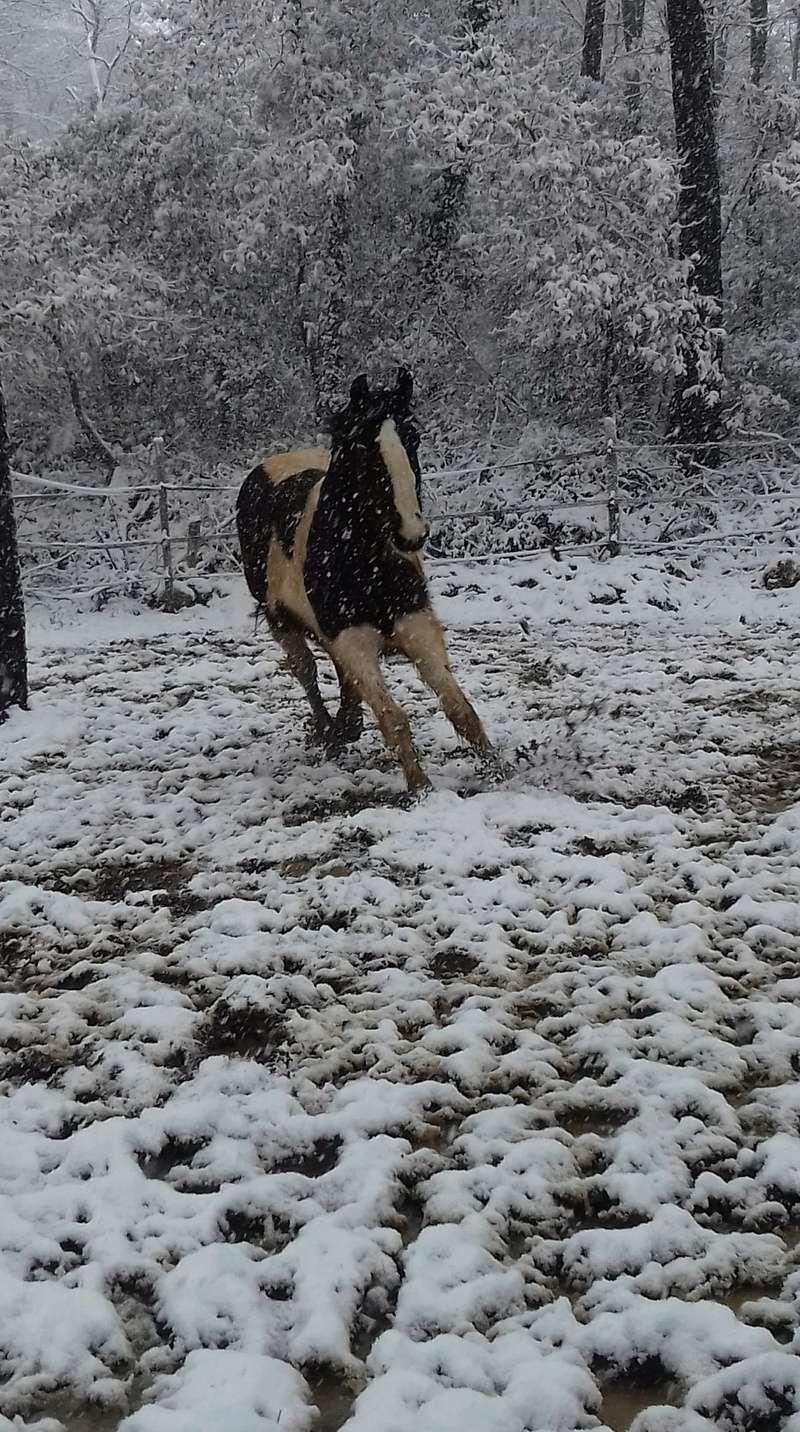 Neige dans le Var Receiv24