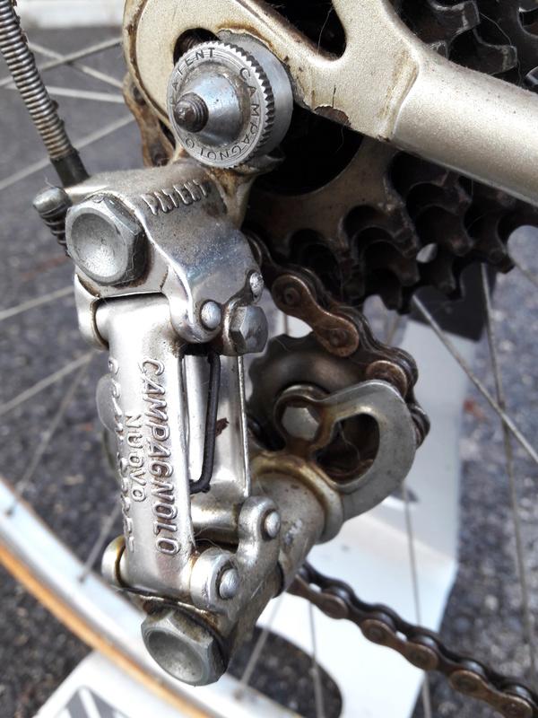 Cicli Lucchini Campa10