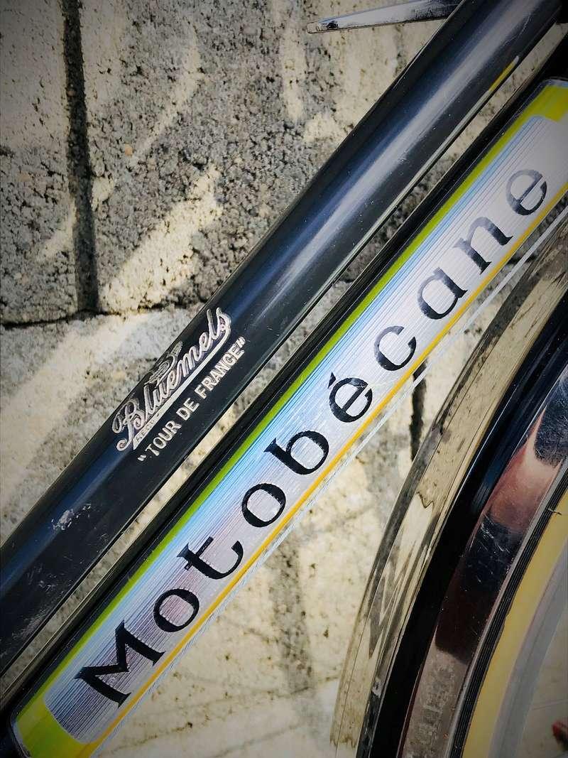 Motobecane 650b - Page 2 Logo10