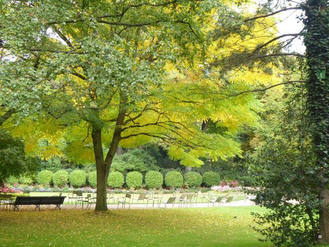 Choses vues dans le jardin du Luxembourg, à Paris - Page 5 P1000713