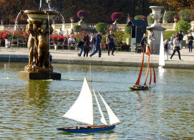 Choses vues dans le jardin du Luxembourg, à Paris - Page 5 P1000813