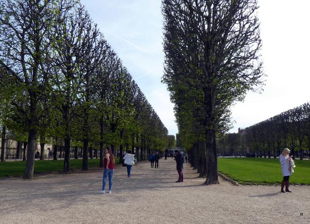 Choses vues dans le jardin du Luxembourg, à Paris - Page 6 P1020429