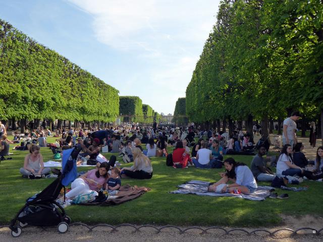 Choses vues dans le jardin du Luxembourg, à Paris - Page 6 P1020433