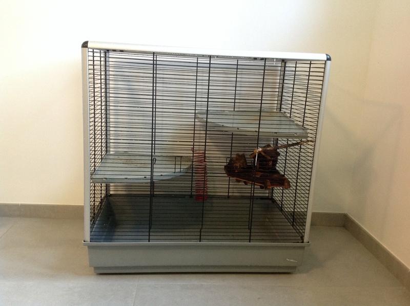 VENDU grande cage ferplast + accessoires et nourriture  Image14