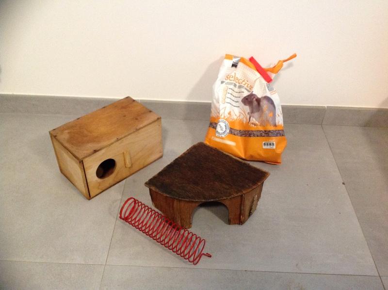 VENDU grande cage ferplast + accessoires et nourriture  Image16