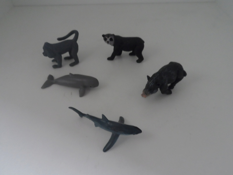 The solid Yowie-UK and US  animals in my zoo - Page 2 Sam_5210