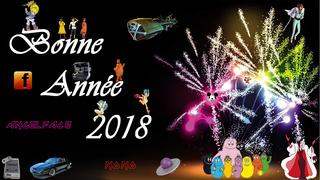 Bonne année 2018 Annye_10