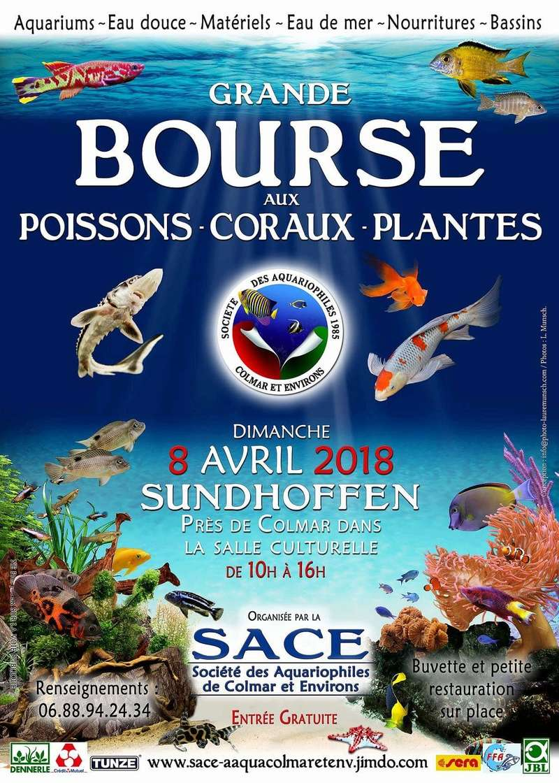 Bourse Sundhoffen (68) - 8 avril 2018 Fb_img13