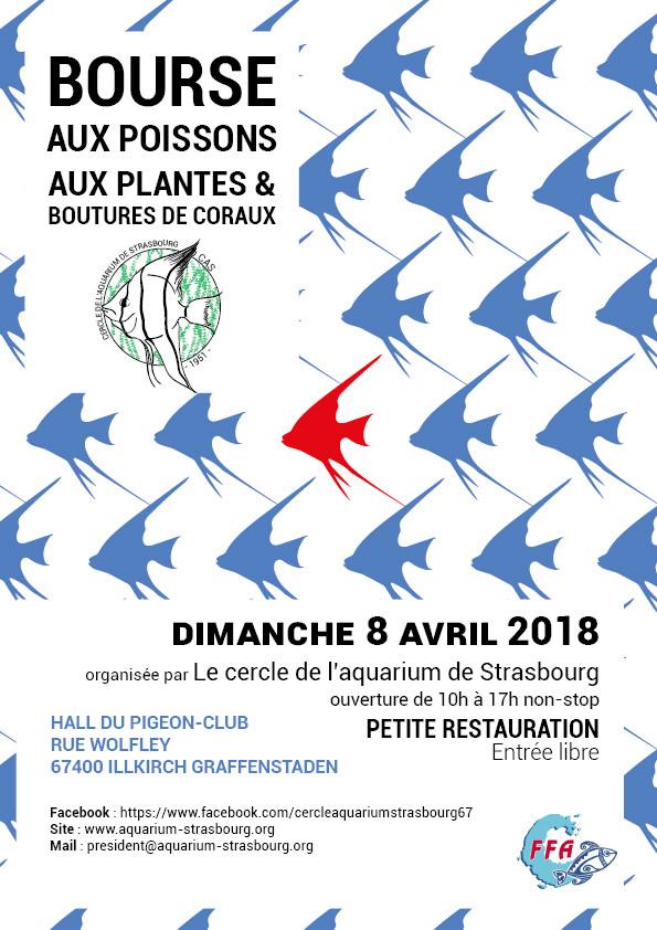 Bourse du CA Strasbourg à ILLKIRCH (67) - 8 avril 2018 Ilki10