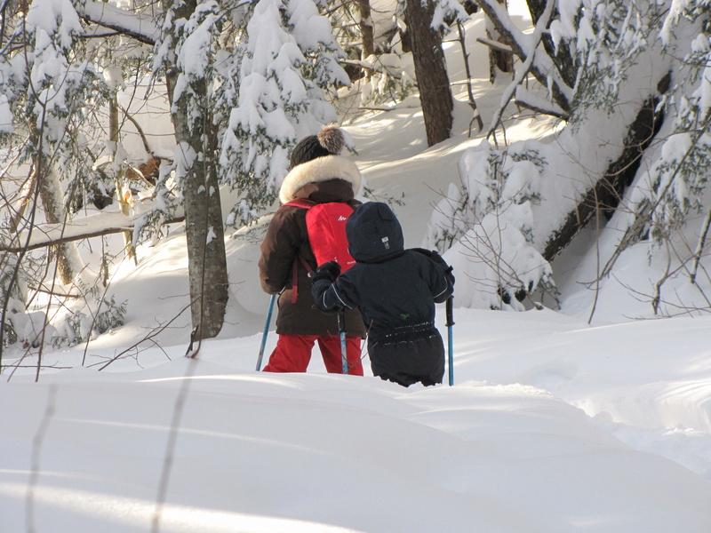 Si ça n'est pas encore l'hiver, ... Img_0152