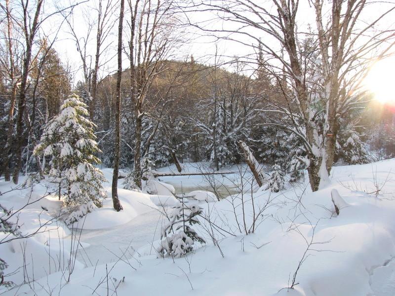 Si ça n'est pas encore l'hiver, ... Img_0212