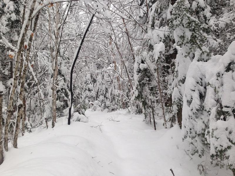 Vive l'hiver Img_3011