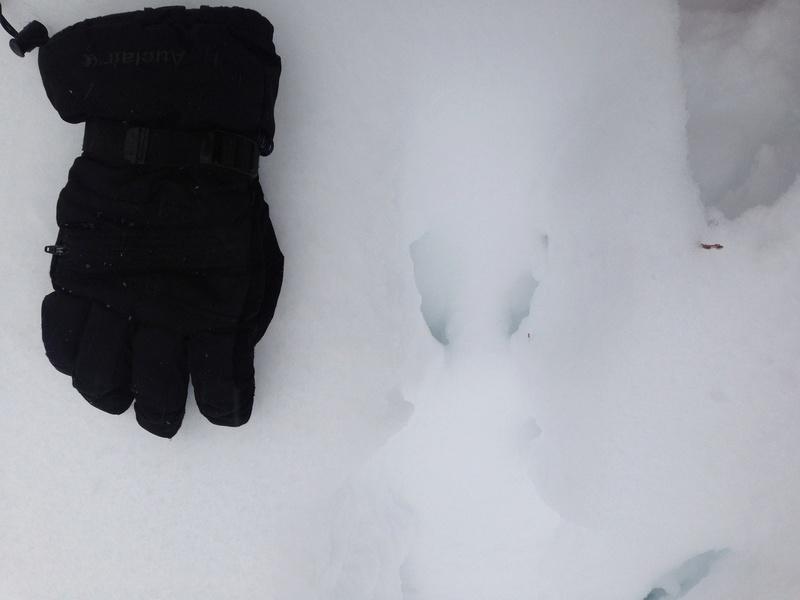 Vive l'hiver Img_3015