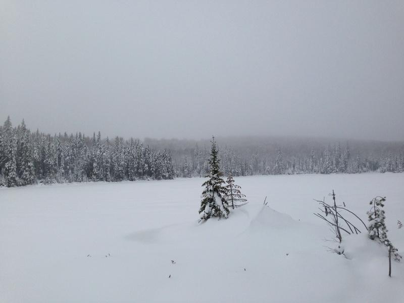 Vive l'hiver Img_3018