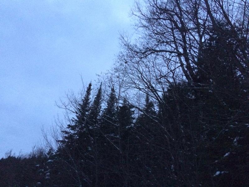 Sortie pré-hivernale Img_5213
