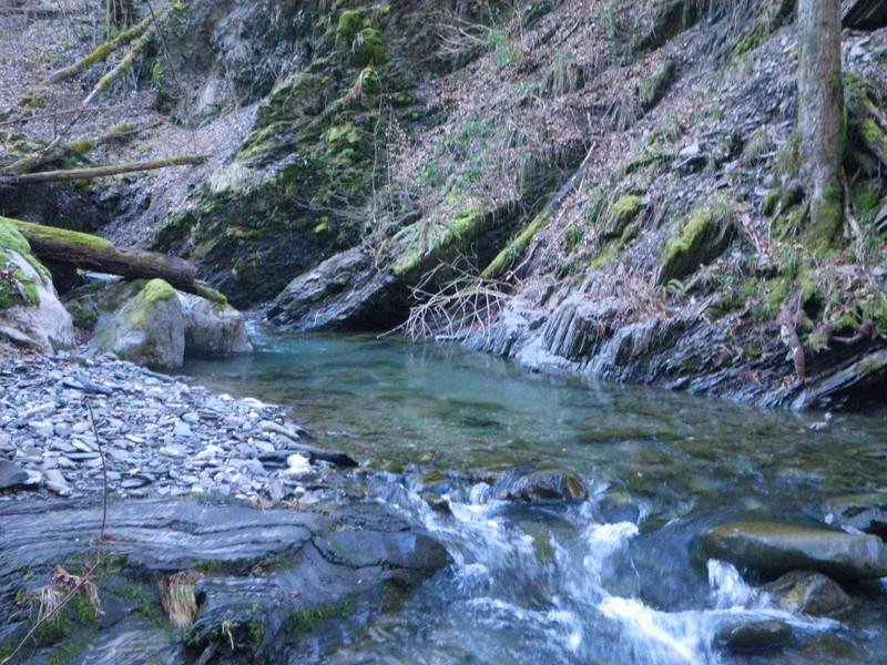 sortie ruisseau Imgp2616
