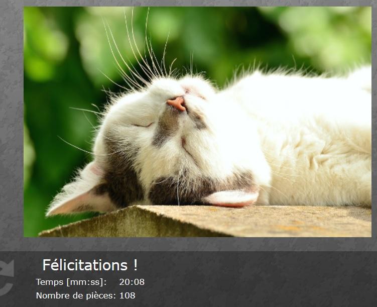 Puzzle #05 / Sleeping Cat Aa69
