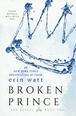 Carnet de lecture de Julie Ambre Broken11