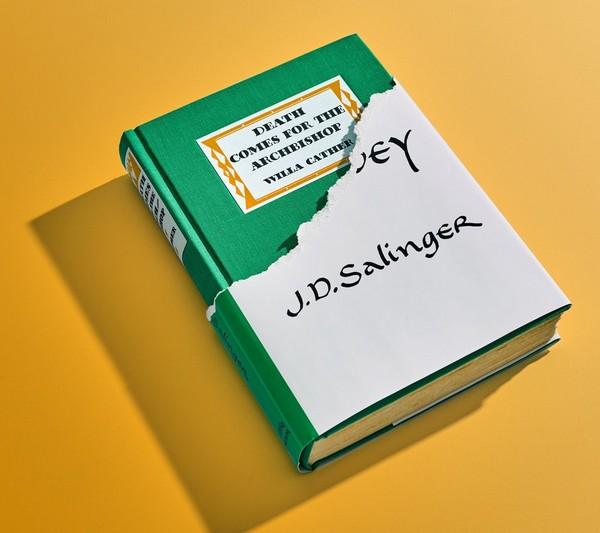 Les 21 livres qui pourraient remplacer des classiques de la littérature. Book10