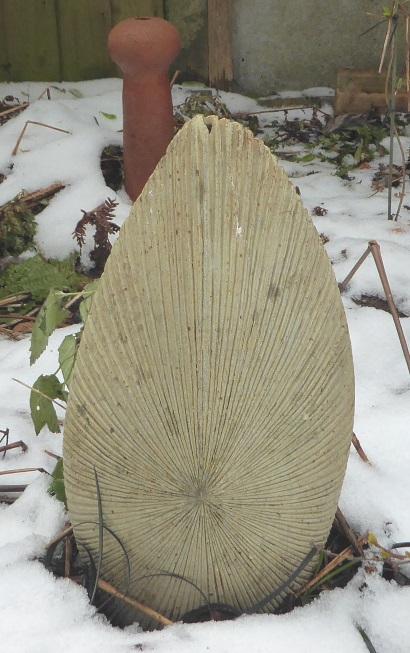 Potty iThe Snow! P1000311