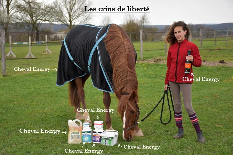 Cheval-Energy Dsc_0444