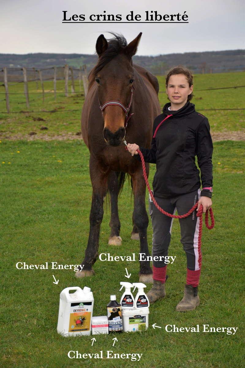 Cheval-Energy Dsc_0446