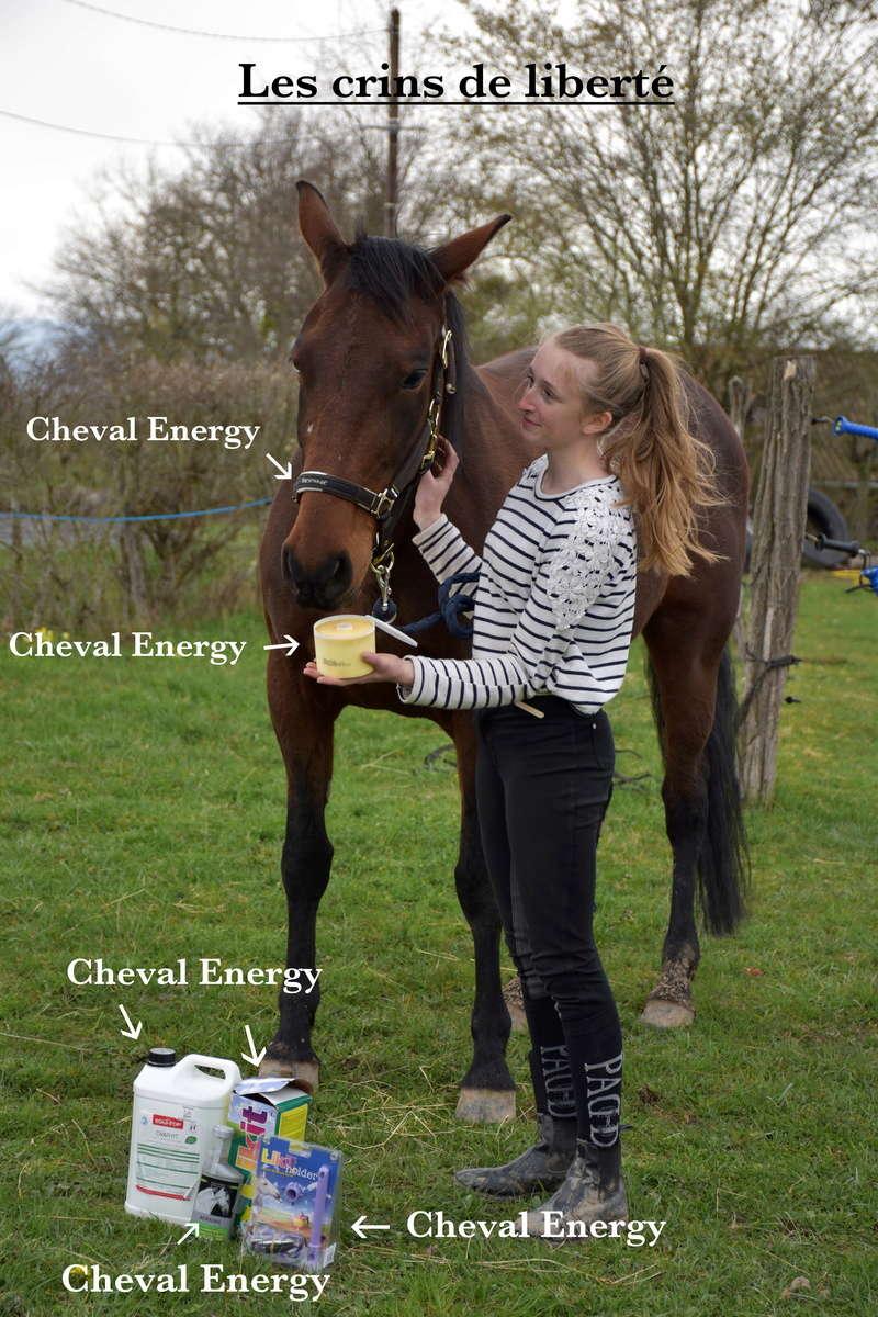 Cheval-Energy Dsc_0447