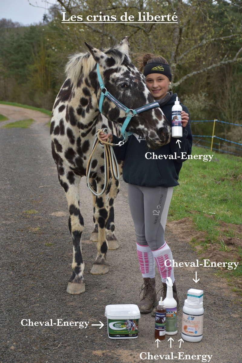 Cheval-Energy Dsc_0448