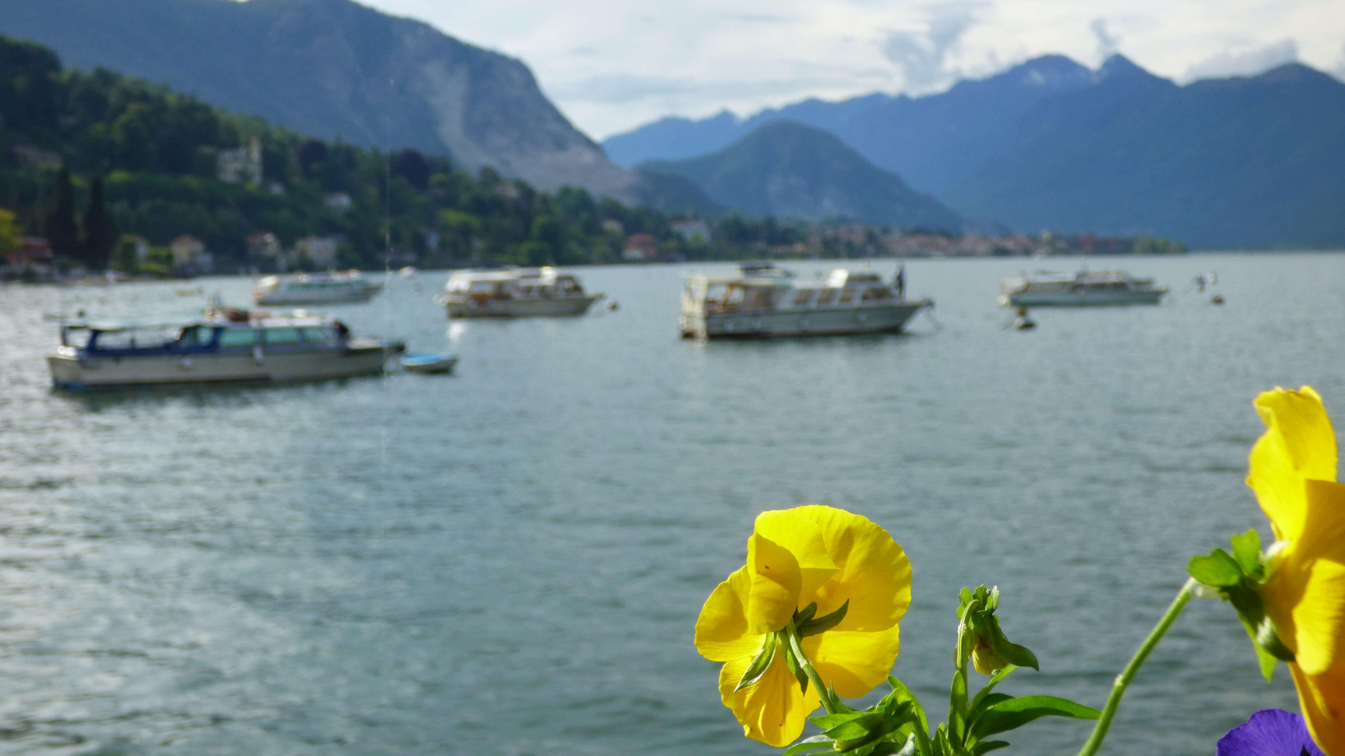 Au retour de vacances dans la région des lacs Italiens P1030121