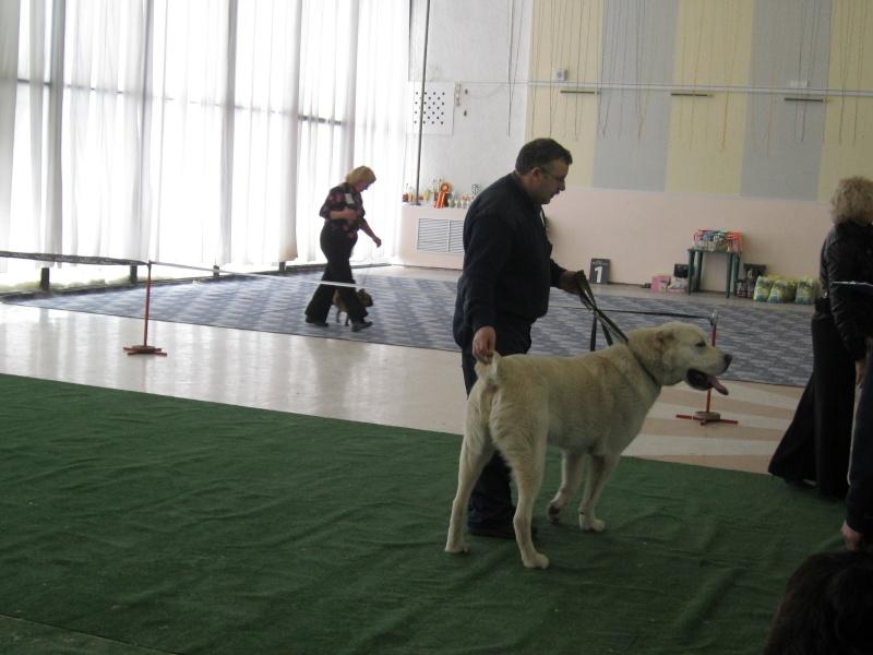 Региональная выставка в Саратове Img_0310