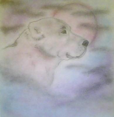Рисунки алабаев (и не только). Pictur10