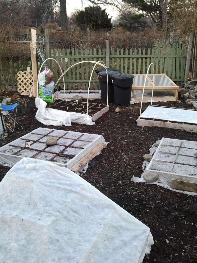 First full season in the community garden 2011-013