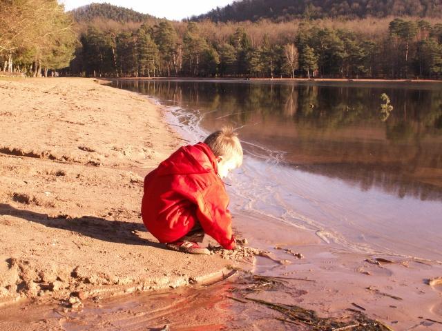 """Camping   """"Le lac d'hanau"""" 03710"""