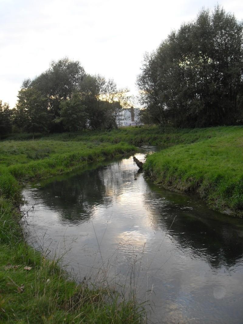 Rivière la Selle Sdc11411