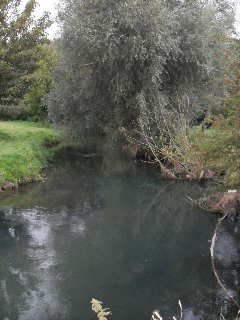 Rivière la Selle Sdc11414