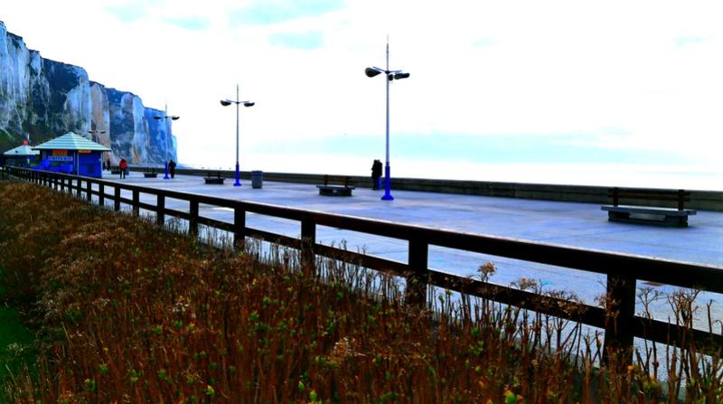 suite 2...photos sortie avec les z'amis de Fotaniflo en baie de Somme  Ok_rv_63