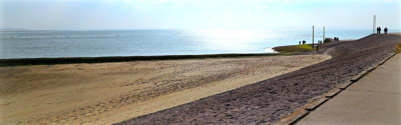 suite 2...photos sortie avec les z'amis de Fotaniflo en baie de Somme  Ok_rv_73