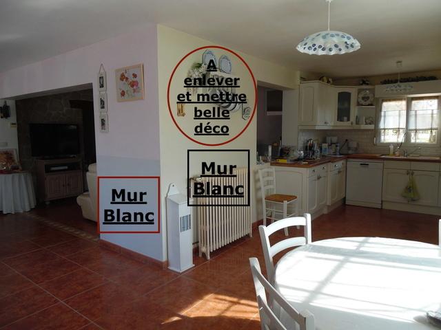 Besoins conseils couleurs repeindre murs séjour et cuisine Cuisin12