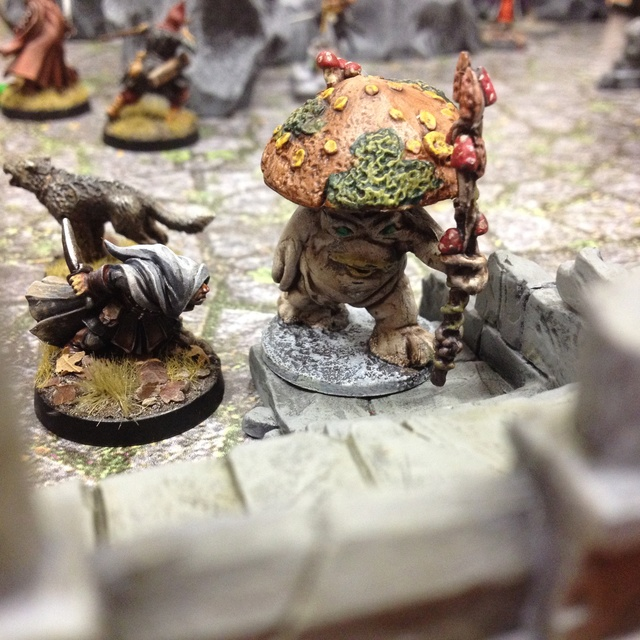 [Frostgrave] galerie photo collective Img_4036