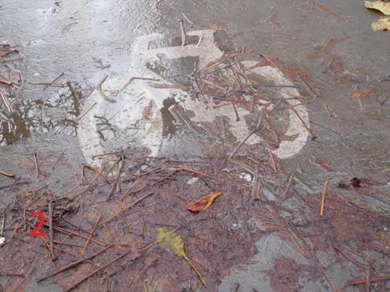 """1-02 La """"Fake Piste"""" de l'Avenue du gouverneur Cornez Image012"""