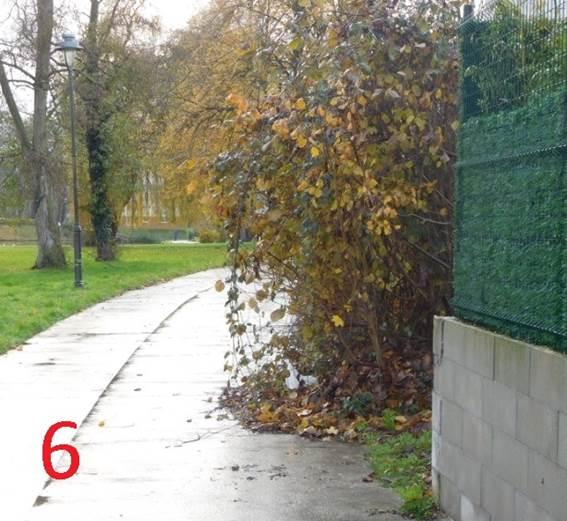 """1-02 La """"Fake Piste"""" de l'Avenue du gouverneur Cornez Image016"""
