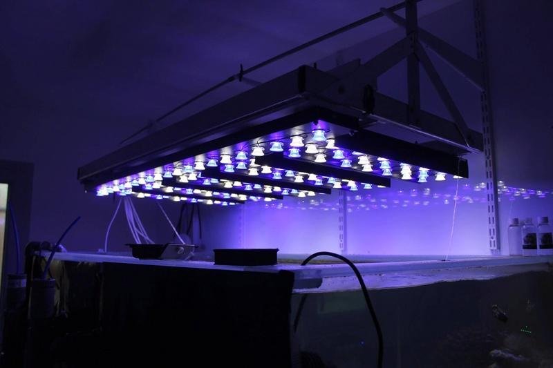 Eclairage pour Discus Lampe_10